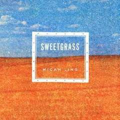 "Hire Stewart Williams - Portfolio - ""Sweetgrass"" Book Cover"