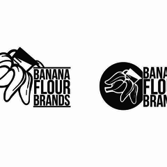 Hire Ashley Ruggirello - Portfolio - Banana Flour Brands Logo Comp