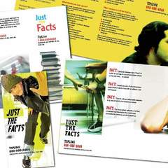 Hire Shelly Barnes - Portfolio - Just the Facts Brochures