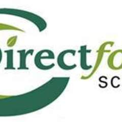 Hire Marianne McDougall - Portfolio - Direct Foods logo design