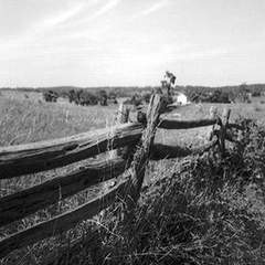 Hire Jeremiah Tutwiler - Portfolio - Old Virginia Fence