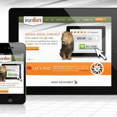 Hire Nicolle Principe - Portfolio - IronLion Website: Desktop & Mobile Design
