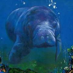 Hire Leo Ang - Portfolio - Behold the Dugong