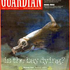 Hire Tracy Cox - Portfolio - San Francisco Bay Guardian / Bay Dying
