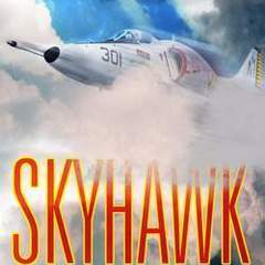 "Hire Stewart Williams - Portfolio - ""Skyhawk"" Book Cover"