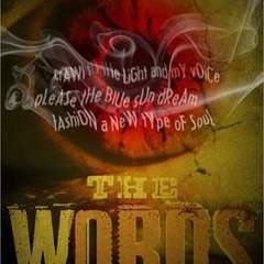 "Hire Stewart Williams - Portfolio - ""The Words"" Book Cover"