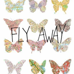 Hire Ricardo Ferreira - Portfolio - Fly Away