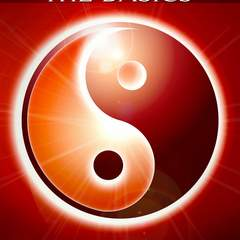 Hire Lori Follett - Portfolio - Feng Shui Book Cover Design