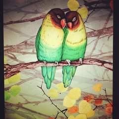 Hire Traci Parrish - Portfolio - Lovebirds Illustration