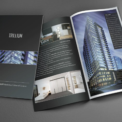 Hire Juan Carlzon - Portfolio - Trillium corporate brochure