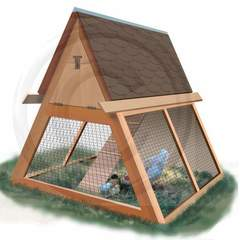Hire Bethany Caskey - Portfolio - Chicken Shelter