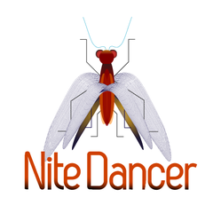 Hire Alan Bennington - Portfolio - Nite Dancer.com